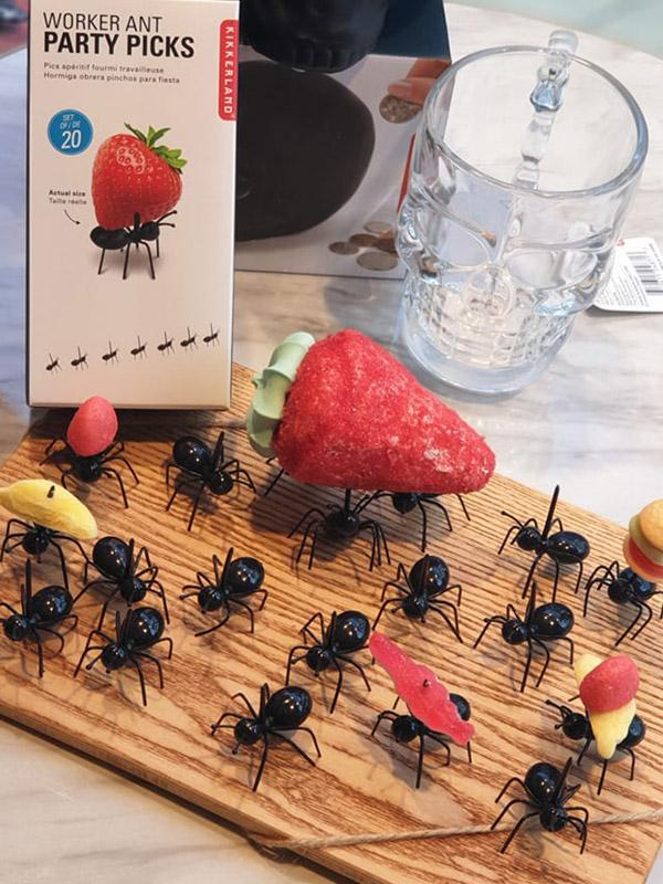 Presentoir fourmi